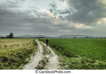 haut, marche, vert, grass., sky., contre, colline, chemin, azerbaïdjan, a couru, champ, away., homme, jaune, road.