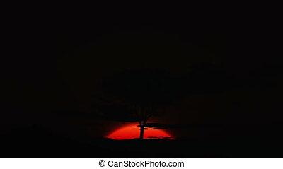 hd, -, désert, levers de soleil
