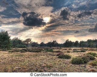 heathland, image, ouvert, hdr
