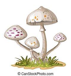 herbe, champignon