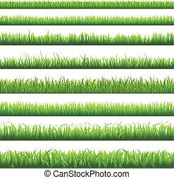 herbe, frontière, vert