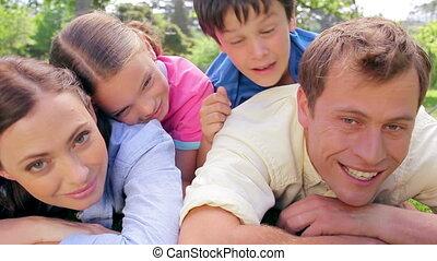 herbe, mensonge, ensemble, famille