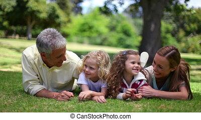 herbe, poser, quoique, mensonge, ensemble, famille