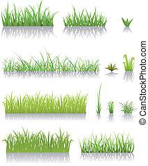 herbe, vert, ensemble