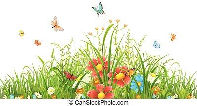 herbe, vert, fleurs