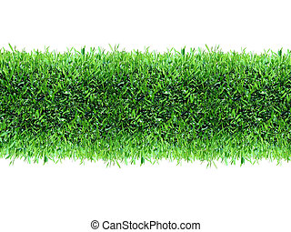 herbe, vert, printemps, fond