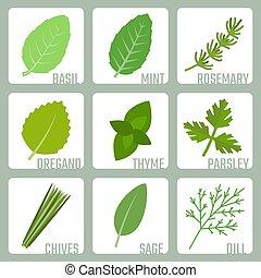 herbes, vecteur, ensemble, isolé, icônes