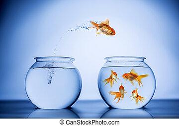 heureusement, fish, sauter