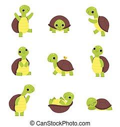 heureux, marche, dormir, ensemble, onduler, tortue, vert, vecteur, patte