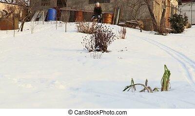 heureux, neige, sledding, enfant