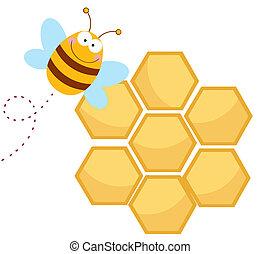 heureux, rayon miel, abeille