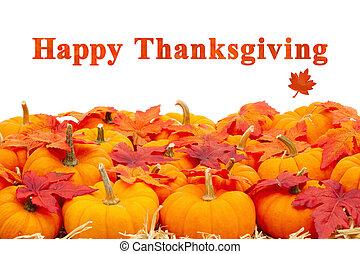 heureux, thanksgiving, feuilles, orange, salutation, potirons, automne