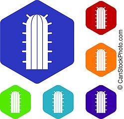 hexagone, icônes, ensemble, cactus, cereus, candicans