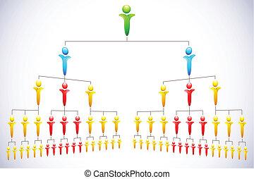 hiérarchie, organisational