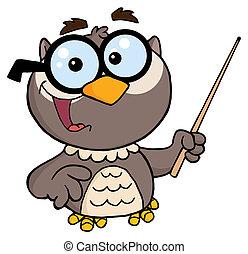 hibou, prof, caractère, dessin animé