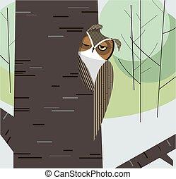 hibou, sommes, arbre creux, coffre
