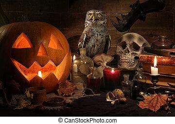 hibou, vie, encore, halloween, citrouille