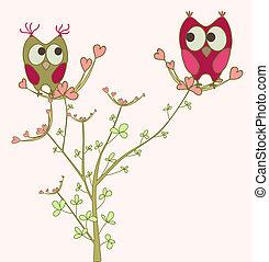 hiboux, amour, branche