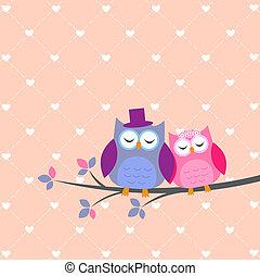 hiboux, amour, couple