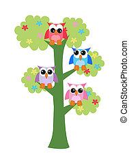 hiboux, arbre, coloré, séance