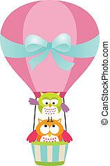 hiboux, balloon, air chaud