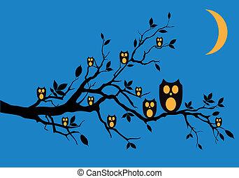 hiboux, vecteur, nuit, arbre