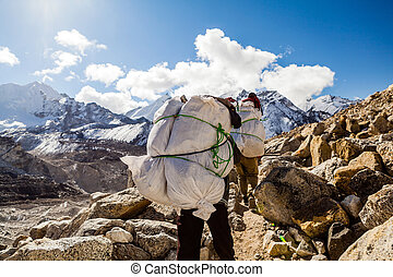 himalaya, montagnes, marche, piste, gens
