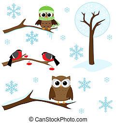 hiver, éléments, ensemble