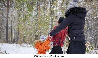 hiver, famille, parc, amusement, avoir, heureux
