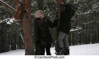 hiver, famille, parc, séduisant, amusement, avoir, 96fps