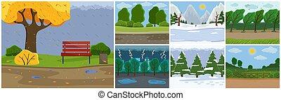 hiver, plat, automne, spring., image, été, weather., différent, ensemble, seasons., changement
