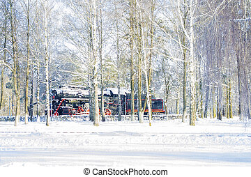 hiver, train, forest., neigeux