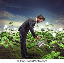 homme affaires, nurtures, idées, nouveau