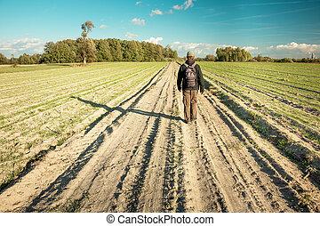 homme, bleu, champs, terre, horizon, ciel, route, marche, bas