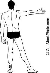 homme, dénudée, debout