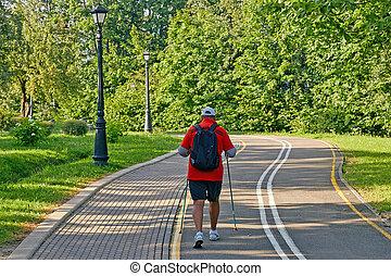 homme, dos, pratiquer, nordique, personne agee, vue, marche