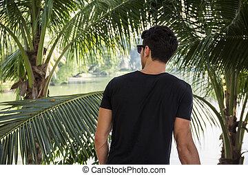 homme, paume, dos, arbres, jeune