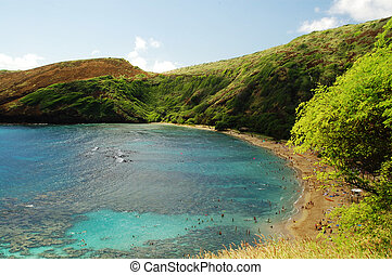 honolulu, hawaï, baie, récif, hanauma, plage