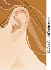 humain, ear.