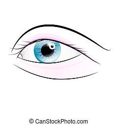 humain, fond, isolé, vecteur, oeil, blanc