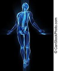 humain, soulèvement, corps