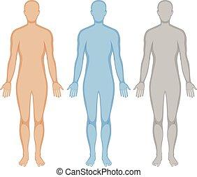humain, trois, corps, couleurs, contour