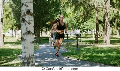 husky, jogging, parc