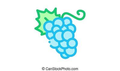 icône, baies, raisin, animation