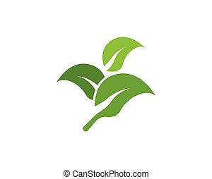 icône, nature, plante, vecteur, illustration