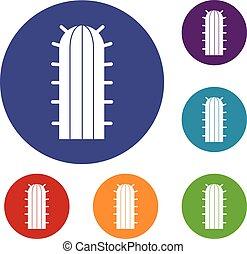 icônes, ensemble, cactus, cereus, candicans