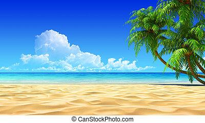 idyllique, paumes, exotique, plage sable, vide