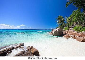 idyllique, seychelles, plage