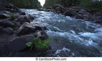 idyllique, sound., scène, sunrise., eau, fps., flotter, rivière, 50