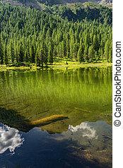 idyllique, vert, lac, paysage, forêt